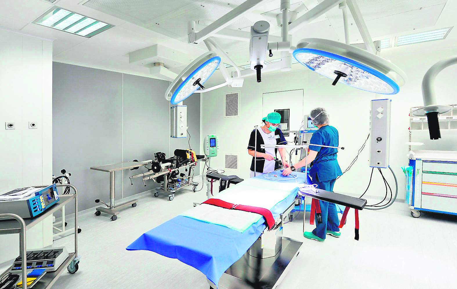 Consiliere și orientare profesională: 150 de studenți știu dacă se fac ortopezi pediatri ori ba