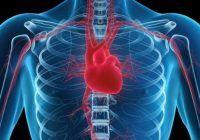 Primul lucru pe care să îl faci dimineața pentru a preveni bolile de inimă. Beneficii uriașe pentru sănătate