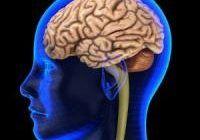 Alimentaţia nesănătoasă poate duce la apariţia Alzheimerului. Metode prin care preveniţi degenerarea cerebrală