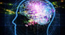 Special pentru studenți – 4 super-alimente care stimulează creierul