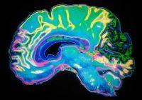 Testul care poate detecta demenţa într-un timp record
