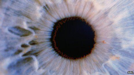 A fost descoperit tratamentul care poate reda vederea pacienţilor complet orbi