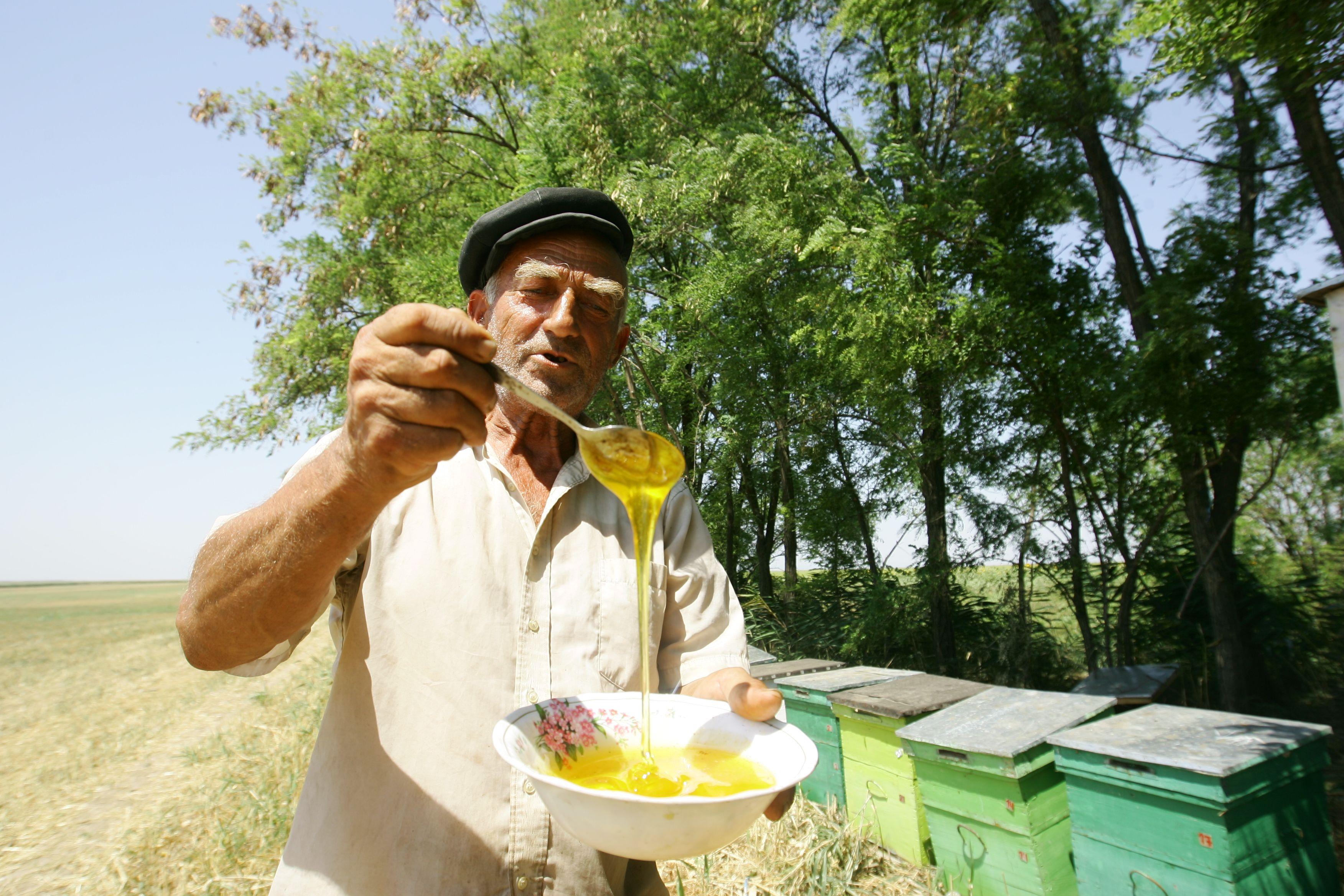 Farmacia din stupul de albine. La ce ajută polenul, lăptișorul și propolisul
