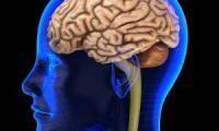 O vitamină arhicunoscută ar putea preveni boala care ne șterge memoria