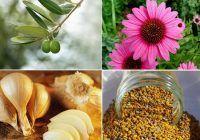 Top 10 antibiotice naturale