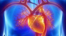 Dieta-minune care păstrează mintea ascuţită şi inima sănătoasă
