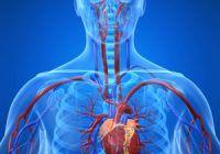 Ce nu trebuie să ne lipsească din alimentaţie dacă vrem să ţinem bolile cardiovasculare la distanţă
