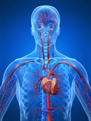 Poţi face infarct chiar dacă nu ai colesterolul mare? Iată ce spun cercetătorii