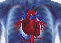 Prevenţia este cea mai bună metodă pentru reducerea mortalităţii prin boli cardiovasculare