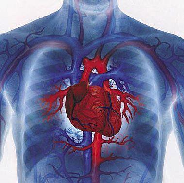 Principalele patru rele când vorbim de sănătatea inimii