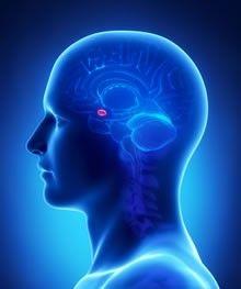 Descoperiri importante în tratamentul epilepsiei: specialiştii au reuşit să împiedice apariţia crizelor