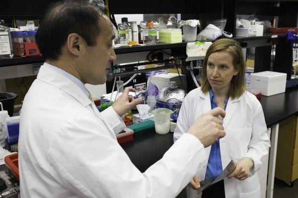 Cercetătorii au descoperit o substanţă care poate reîntineri inimile vârstnicilor