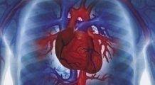 Cea mai simplă metodă să-ți menții inima sănătoasă