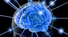 Un neurolog cu experiență susține că anumite alimente și obiceiuri pot preveni boala Alzheimer mai bine decât orice medicament sau supliment