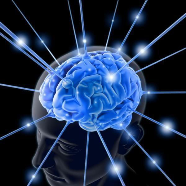 """Ce să mâncăm ca să """"programăm"""" creierul să producă mai mulți neuroni"""