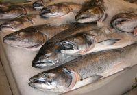 Ce tip de pește ar trebui să evitați. Experții spun că e foarte dăunător