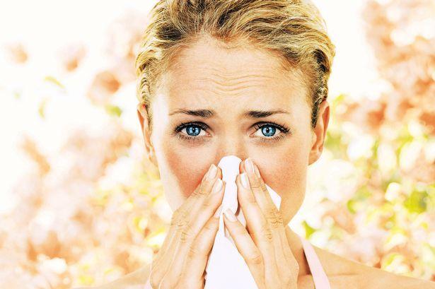Bolile alergice sunt în creştere şi tind să capete proporţii epidemice