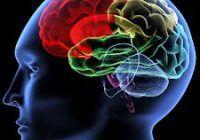 Jobul care creşte de trei ori riscul leziunilor cerebrale