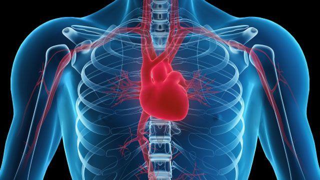 Ce înseamnă diagnosticul de inimă mărită