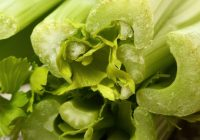 Inamicii verzi ai cancerului. S-a demonstrat că mai multe plante des folosite au proprietăţi ANTICANCERIGENE