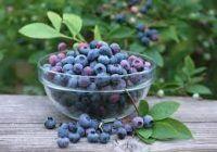 Trei alimente care combat inflamația și durerile articulare