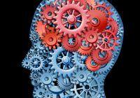 Când devine pierderea memoriei o problemă și cum ne hrănim creierul ca să-l păstrăm cât mai mult timp în bună stare?