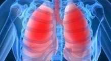 Medicamentul inovator care programează organismul să găsească și să distrugă cancerul pulmonar