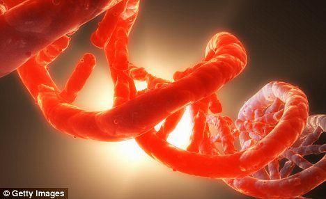 Cercetătorii au descoperit o metodă prin care pot prelungi viaţa cu 16 ani