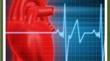 Nu grăsimea, alt ingredient îți îmbolnăvește inima