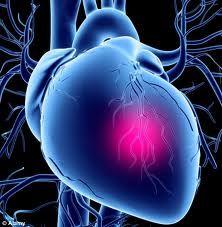 Investigaţii medicale gratuite pentru depistarea afecţiunilor cardio-vasculare. Află unde şi în ce perioadă