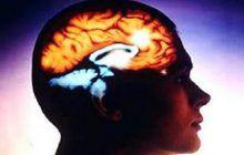 Cauzele accidentului vascular. Ce ne îmbolnăvește creierul?