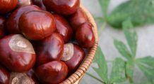 Beneficiile uimitoare pe care le aduc castanele: Scad riscul de infarct, tratează varicele şi luptă împotriva bolilor reumatice