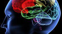 Cum schimbă pornografia creierul uman. Efecte incredibile