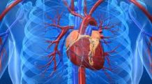 De ce apar palpitațiile și cât sunt de periculoase?