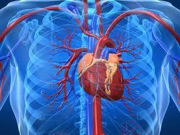 Combinația miraculoasă care curăță arterele inimii de depozitele de grăsime