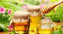 Mierea-cel mai bun medicament. Iată în ce boli e utilă