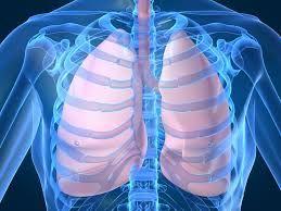 Un simplu test de sânge poate depista cancerul de plămâni în stadii incipiente