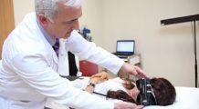 Consultaţii gratuite pentru bolnavii de cancer