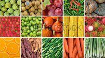 Din ce alimente îți iei proteinele, fierul și calciul dacă nu mănânci carne și lactate?