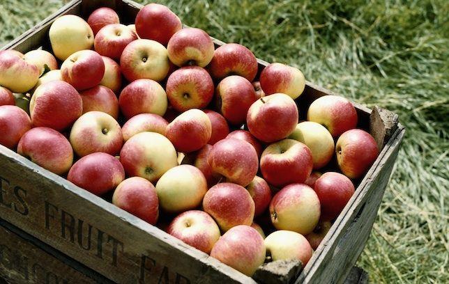Un măr pe zi CHIAR ține doctorul departe. Ce alte ZICALE despre sănătate sunt ADEVĂRATE