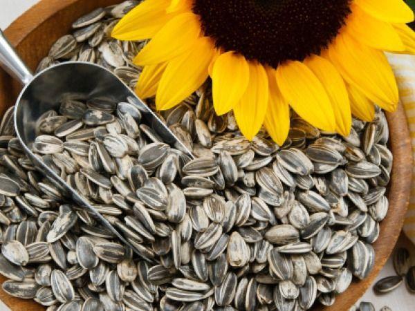 Calitățile nebănuite ale semințelor de floarea-soarelui