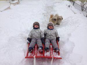 Andy şi Teo, bucurându-se de prima zăpadă din viața lor