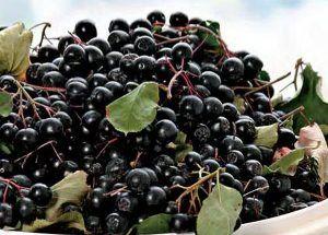 Fructele-minune care conțin cea mai mare cantitate de antioxidanți