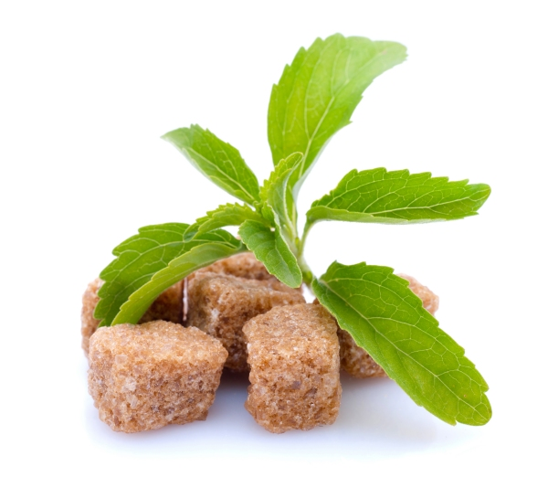 Trei lucruri pe care nu le știai despre Stevia rebaudiană, îndulcitorul-minune