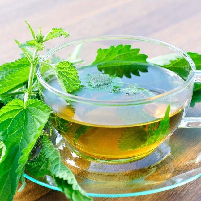 Ceaiul de urzică elimină nisipul de la rinichi și scade glicemia