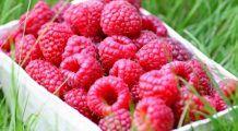 Fructul tinereții veșnice. Scade colesterolul și protejează vasele de sânge