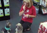 O femeie a mâncat o lună doar mâncare de câini. Află care au fost efectele uimitoare
