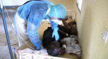 Virusul din Africa ar putea ajunge și în România. Spitalele de urgență, în alertă. SEMNELE BOLII