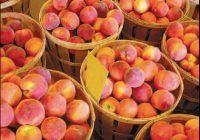 Fructe de sezon care întârzie îmbătrânirea și mențin ficatul sănătos