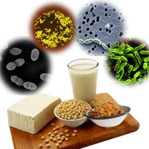 De ce e recomandat să faci o cură cu probiotice și prebiotice toamna